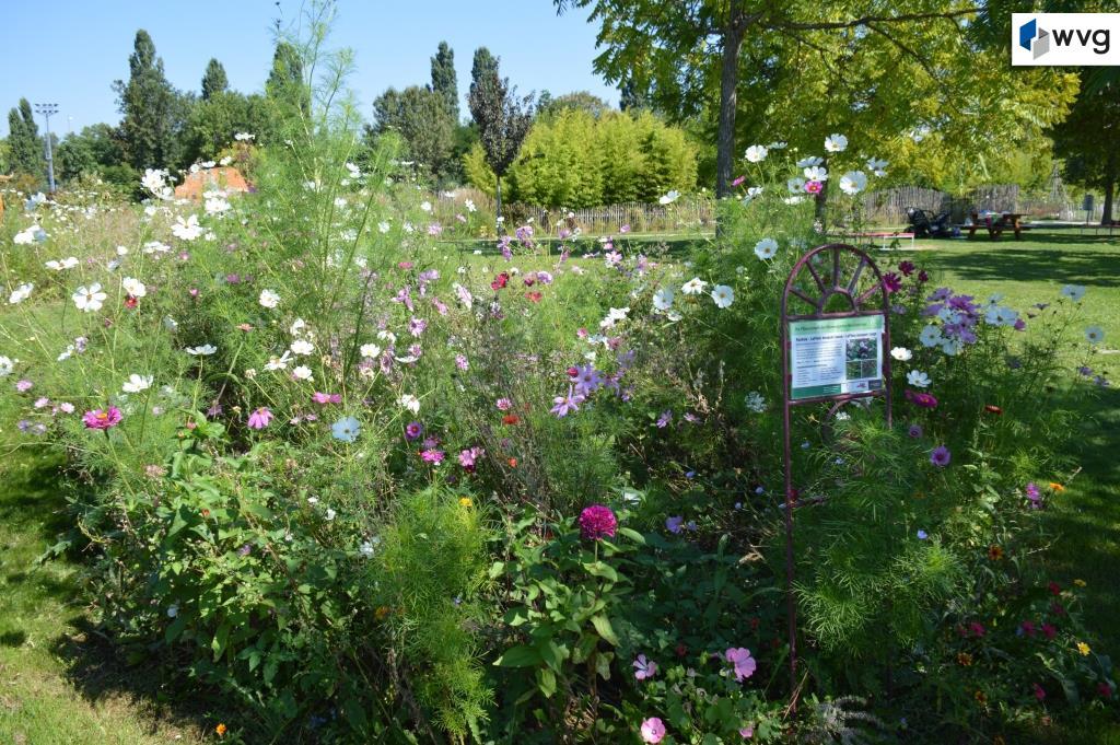 DUO22 Hirschstettner Blumengärten 3