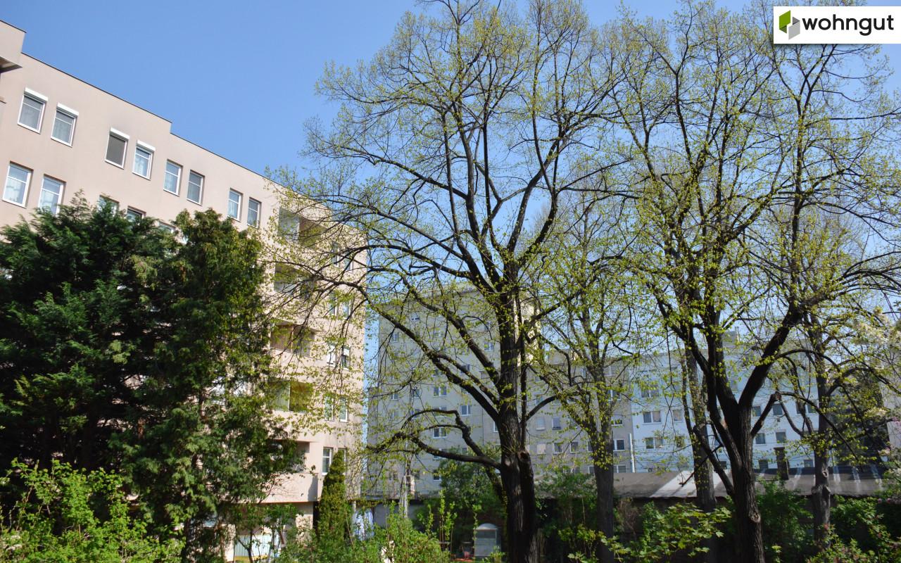TRIANGEL21_Innenhof Nachbargebäude